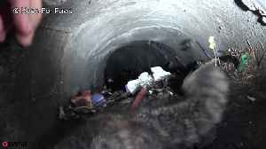 News video: Kitten is rescued after being trapped underground