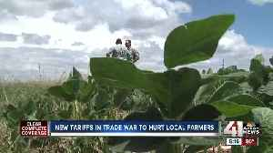 Farmers in Johnson County wary of trade war