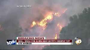 Small brush fire burns near Griffith Observatory