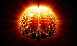 News video: How Does Religion Manifest in Your Brain?