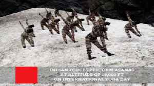 Indian Forces Perform Asanas At Altitude Of 18,000 Ft On International Yoga Day [Video]