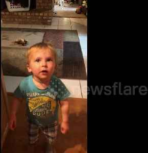 Toddler stops mid-sentence to break into epic dance moves when the beat drops