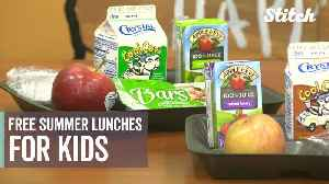 Free meal programs help kids from struggling families find reliable sources of food during summer break