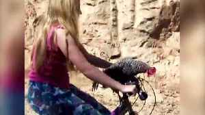 A Chicken And A Girl Go Bike Riding Together