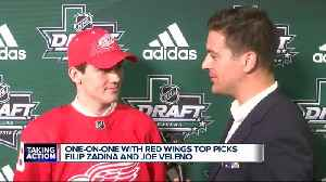 Red Wings top draft picks on what they'll bring to Detroit [Video]