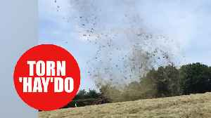 Mini twister known as a 'dust devil' whips hay 200ft into the air