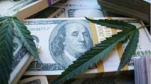Young Traders Invest In First Marijuana Company On NYSE [Video]