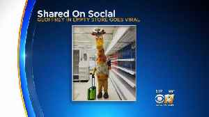 Drowning In Debt, All Toys R Us Stores To Shutter Friday [Video]
