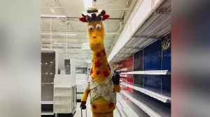 All Toys 'R' Us stores to close today [Video]