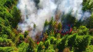 Raw drone footage of trees going up in smoke at Northern Ireland's Glenshane Pass [Video]