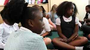 Afro hair is good - class teaches kids to love hairstyle [Video]