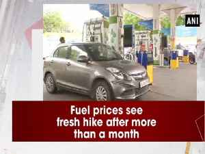 Fuel prices see fresh hike after more than a month [Video]