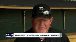 Gardenhire feeling better a day after overheating [Video]