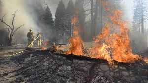 New Wildfire In Northern California Kills One, Spurs Evacuation [Video]