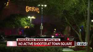 False report of active shooter at Town Square [Video]