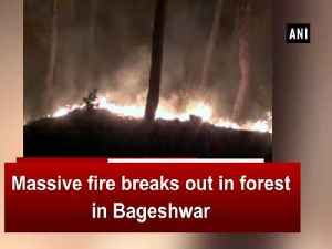 fire breaks out in forest in Bageshwar [Video]