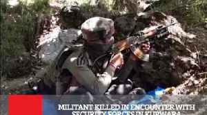 Militant Killed In Encounter With Security Forces In Kupwara [Video]
