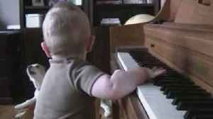 A Boy Plays The Piano While A Dog Howls Along [Video]