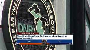 Should Michigan State Park Rangers carry guns, mace or tasers? [Video]