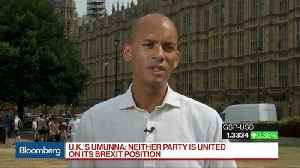 Dominic Raab `Is a Hard Brexiter,' U.K. Lawmaker Umunna Says [Video]
