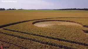 Crop circle pays tribute to nerve victim [Video]