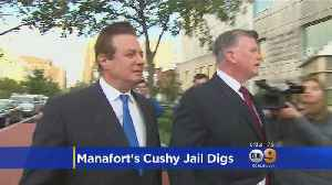 Paul Manafort Thinks He's Being Treated Like A 'VIP' In Jail, Special Counsel Says [Video]