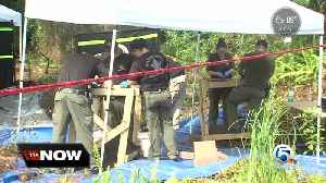 News video: Human skull found by worker in St. Lucie County