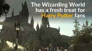 Wizarding World casts spell on Potter fans with Butterbeer-flavored ice cream [Video]