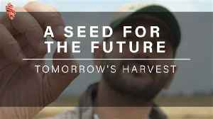 A Seed For Tomorrow [Video]