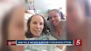 Nashville Woman Survives Dog Attack In Chicago [Video]