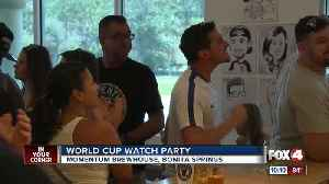 Local fans celebrate French World Cup Win in Bonita Springs [Video]