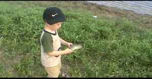 Tot Boy Freaks Out Over A Fish [Video]