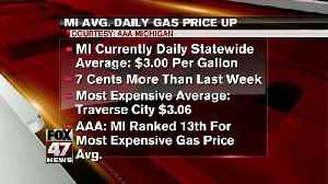 AAA Michigan: Daily gas price up 7 cents [Video]