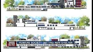 Tampa's Humane Society fundraising for brand new animal shelter [Video]