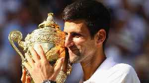 Why Novak Djokovic's Wimbledon Victory Is So Important to Tennis [Video]