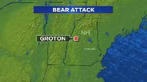 Woman Attacked By Bear Inside New Hampshire Home [Video]