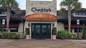 Darden struggles bringing Cheddar's into the fold, analysts say [Video]