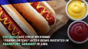 Fun Facts to Celebrate National Hot Dog Day [Video]