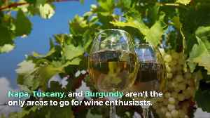 7 Regions to Visit for Wine Lovers [Video]