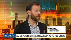 EU Expects China to Accept WTO Reforms [Video]