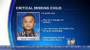 News video: Dallas Police Searching For Missing 9-Year-Old Boy