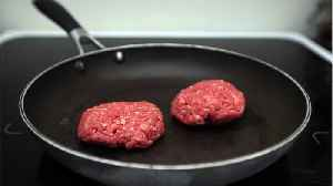 Lab-Grown Meat Could Hit Restaurants By 2021 [Video]
