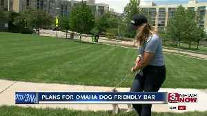 Plans for dog friendly bar in Omaha [Video]