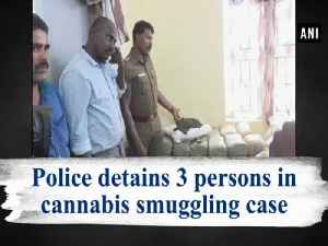 Police detains 3 persons in cannabis smuggling case [Video]