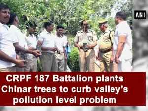 CRPF 187 Battalion plants Chinar trees to curb valley's pollution level problem [Video]
