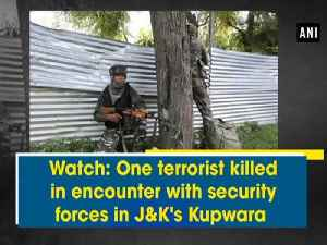 Watch: One terrorist killed in encounter with security forces in J&K's Kupwara [Video]