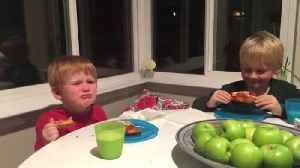 Two Young Boys Find Out Their Mother Is Pregnant With A Baby Girl [Video]