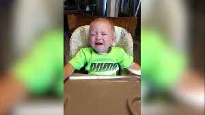 This Kiddo Is A Serious Snacker [Video]