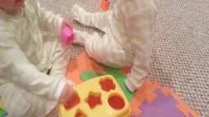 Resourceful Baby Takes A Shorter Path To Success [Video]