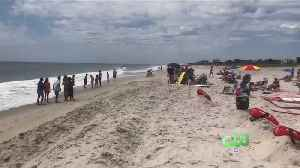 Boy, 13, Girl, 12, Victims Of Possible Shark Attack [Video]